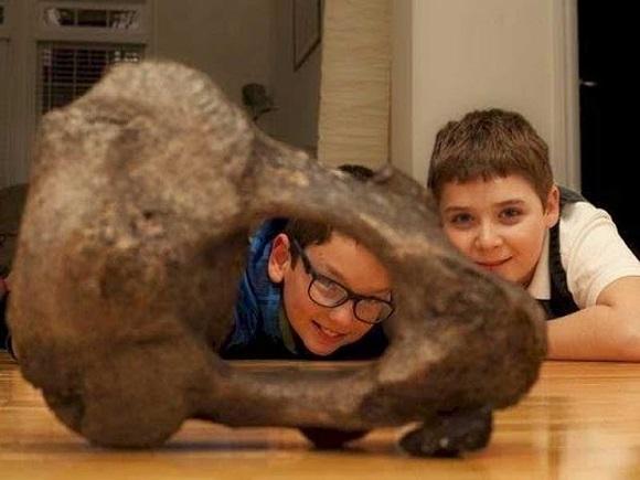 Osso de Mastodonte