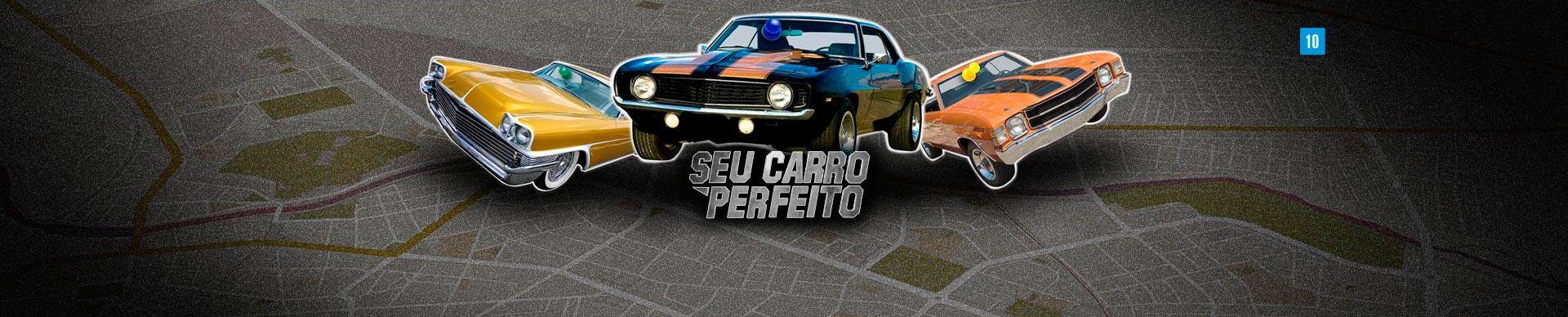 SEU CARRO PERFEITO