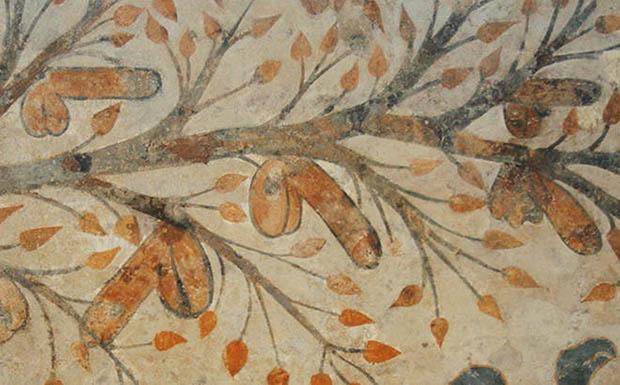 Árvore de penis