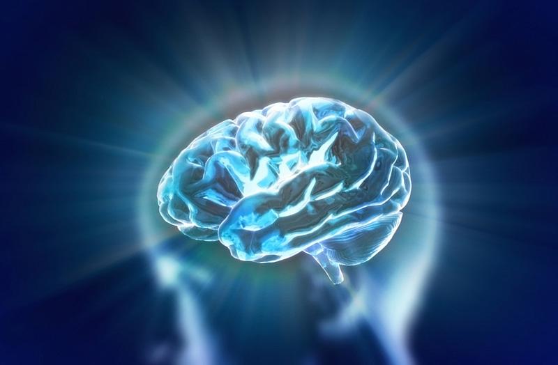 Herbs to cure brain fog