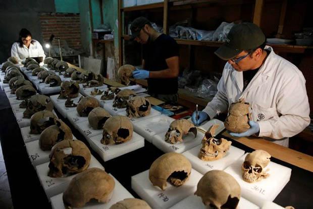 Cranios astecas