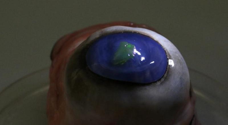 Cientistas criam lente de contato capaz de emitir raios laser - 1